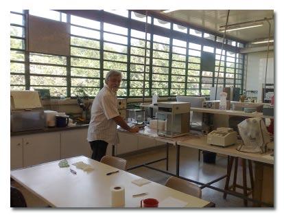 Laboratório de Genética Evolutiva de Himenópteros